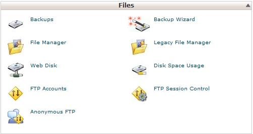 Come fare un backup con cPanel