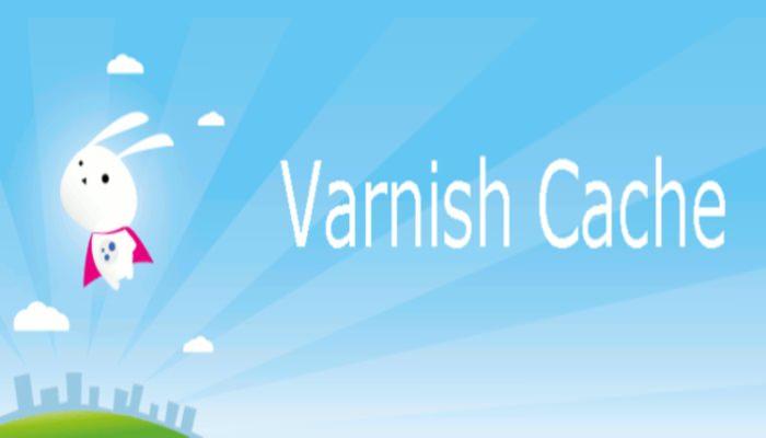 Varnish Cache - Accelleratore di richieste http