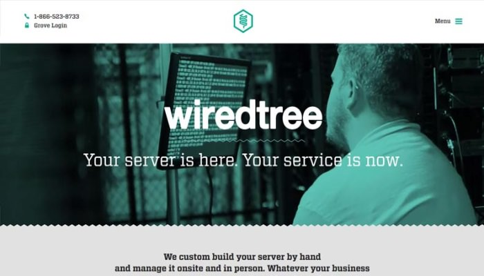 I VPS Managed di WiredTree