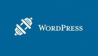 Plugin per WordPress | Cosa sono e perchè usarli?