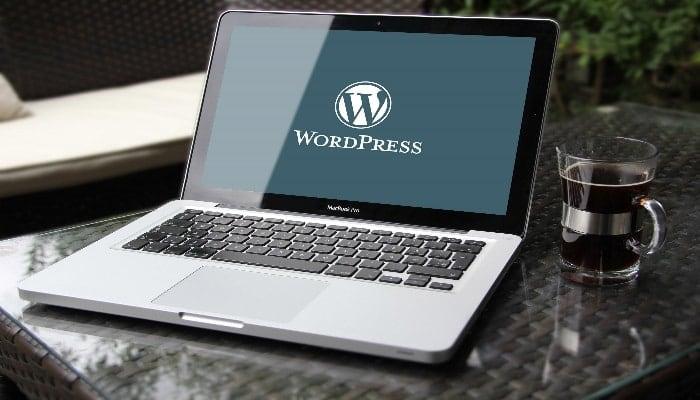 Sei indeciso se scegliere un tema WordPress gratuito o pagamento?