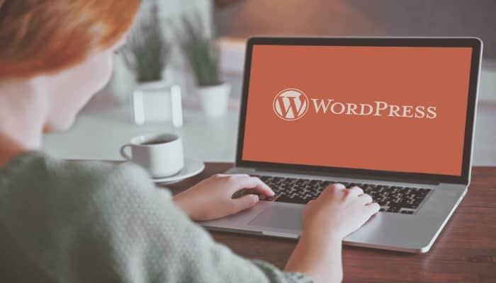 Non sai come leggere le statistiche di WordPress? Usa questi plugin!