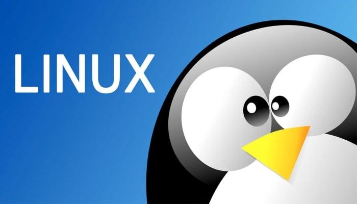 Cos'è un hosting linux? Cosa significa e come funziona?